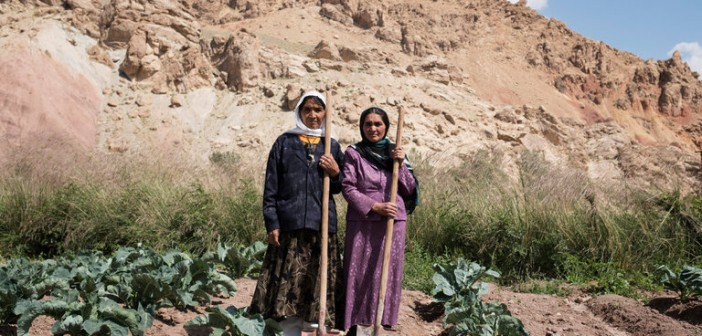 In Afghanistan's Farm Belt, Women Lead Unions and Find New Status